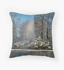 Rainbow fountain in snowy park Throw Pillow