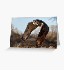 Flight of the Eagle Owl Greeting Card