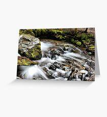 Rainier Trail Waterfall Greeting Card