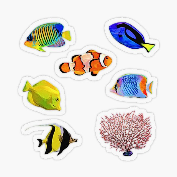 Tropical Ocean Fish ~ Exotic Aquatic Sea Life Sticker Bundle Pack ~ Sticker Sheet Collection Set 1  Transparent Sticker