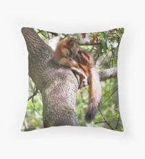 Grey Fox Throw Pillow