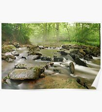 stream on a June morning Poster