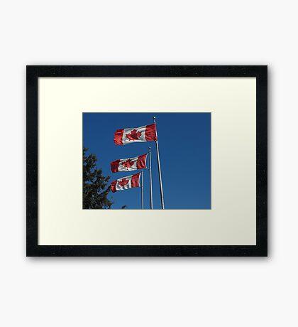 Canada Day! Framed Print