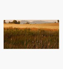 Semi Rural Photographic Print