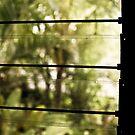Tropical Garden Through the Window, Ubud, Bali by Ashlee Betteridge