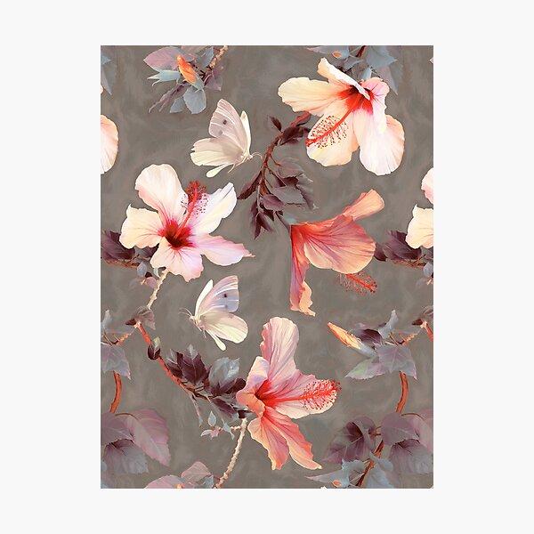 Coral Hibiscus Photographic Print