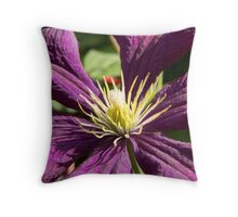 macro blue and ruby red clematis flowers and leaves auf Redbubble von pASob-dESIGN