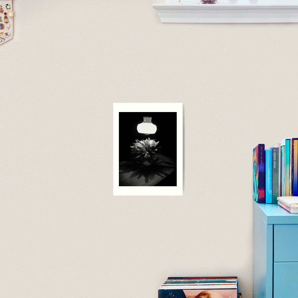 Night Shadows Art Print