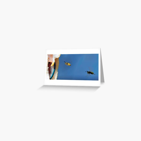 Flying Wasp 0009 Greeting Card