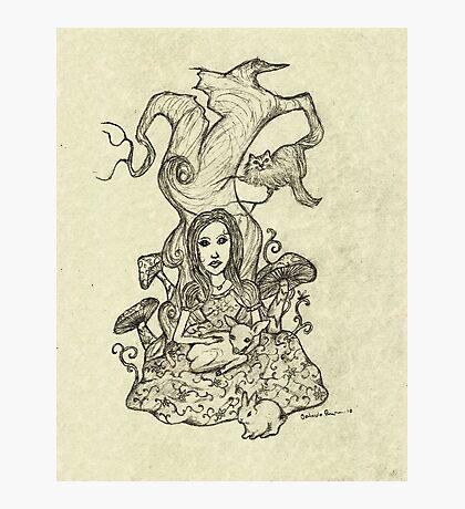 Gentle Alice Photographic Print