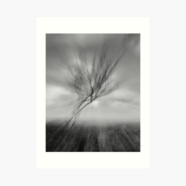 Windswept I Art Print