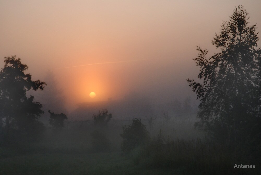 Sunrise in mist by Antanas