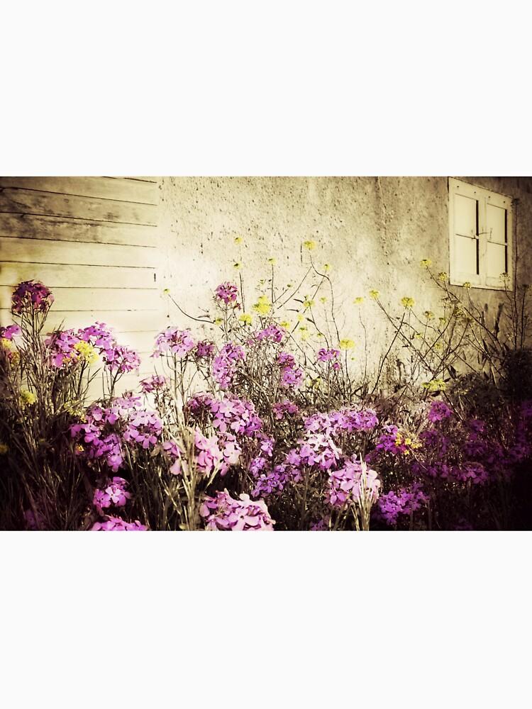Davids Flowers by BarnArtandMore