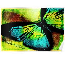 Butterfly Hard Journal Cover Poster