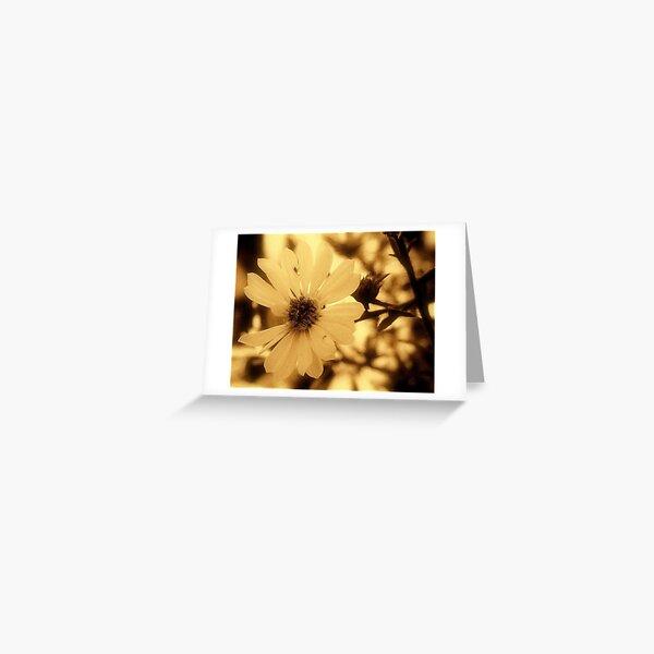 La Fleur de Sol  Greeting Card