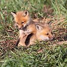 Make Yourself Comfortable, Why Don't You !! by Gary Fairhead