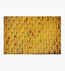 Background of vintage iron net Photographic Print