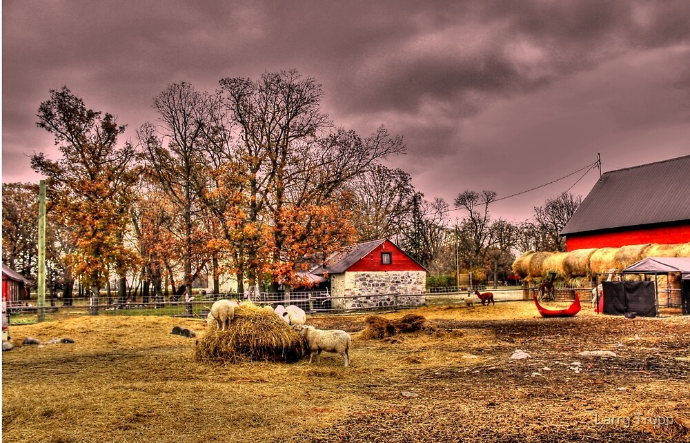 Six Pines Ranch by Larry Trupp