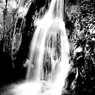 Waitui Falls by Jodie Cooper