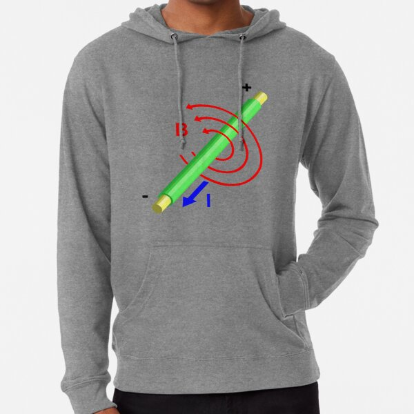 #Formula, #Mathematics, #Equation, #Imaginary, Complex Number, Mathematician, Trigonometric, Functions Lightweight Hoodie