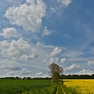 Normand Sky - France by Jean-Pierre Ducondi