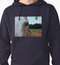 The Soul Of The Horse Pullover Hoodie