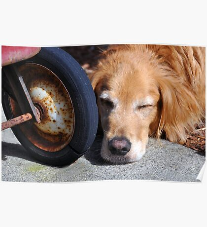 Hunter was so tired he fell asleep at the wheel. Poster