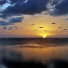 Sunset over the Gulf by Colleen Rohrbaugh