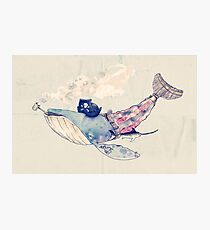 Pirate Whale Photographic Print