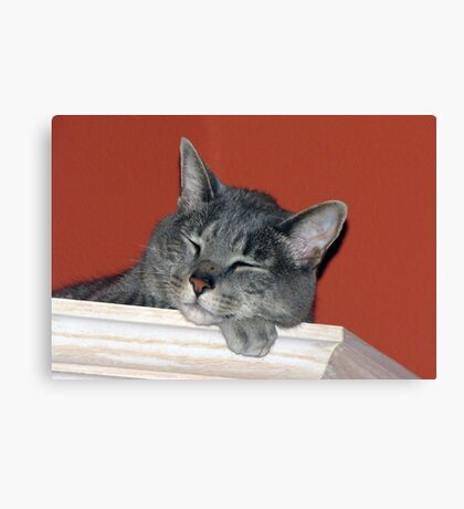 Sleepy Head Canvas Print