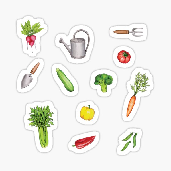 Summer Vegetable Garden Sticker