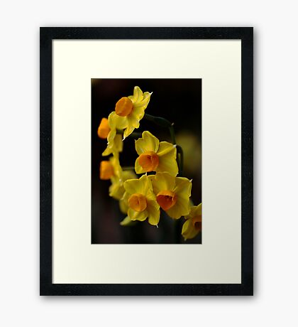 In a Cluster Framed Print