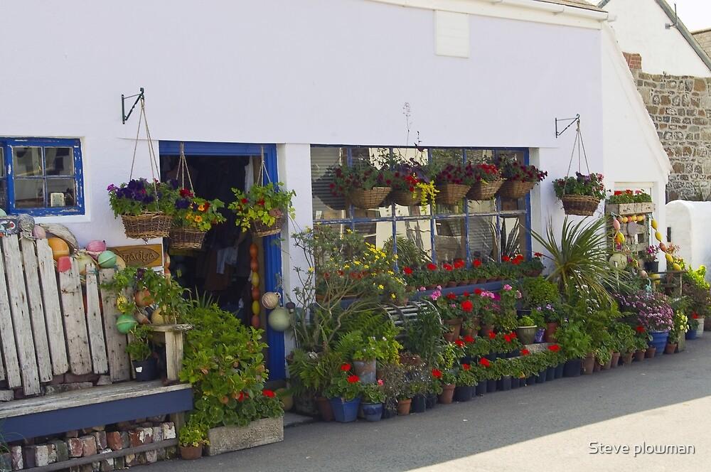 The plant shop by Steve plowman