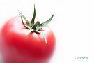 Tomato 1 by aMOONy