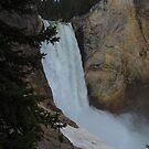 Lower Falls by MikeDAdams