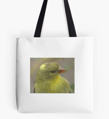 Bird that wanted in my house Tote Bag