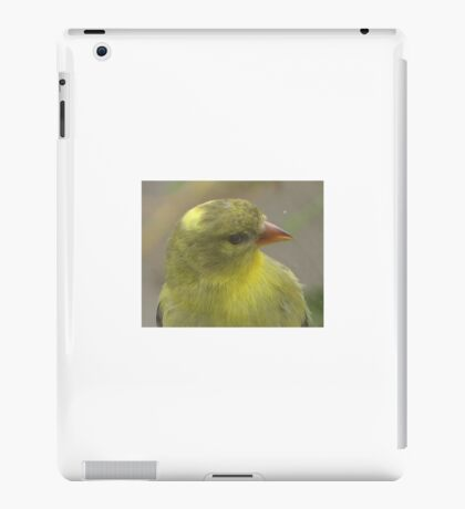Bird that wanted in my house iPad Case/Skin