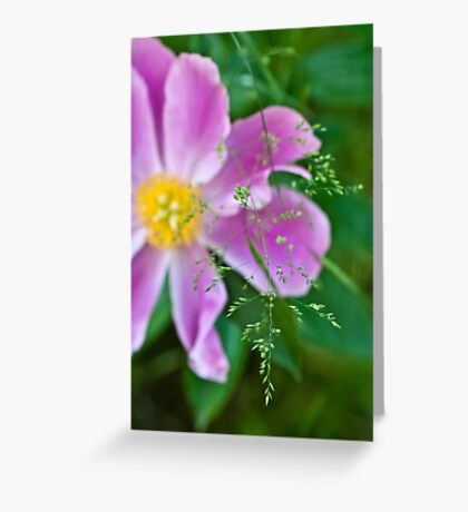 Peony and Straw of Grass Greeting Card