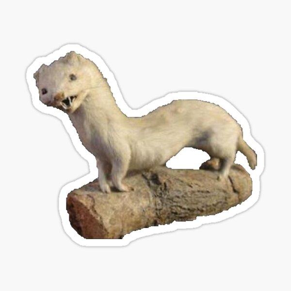 Bad Taxidermy Ferret Sticker