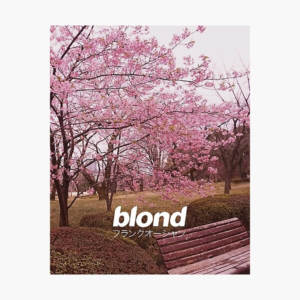 Frank Ocean Blond | Japanese Cherry Blossom Version  Photographic Print