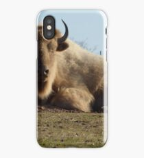 Buffalo of the hill. iPhone Case
