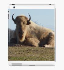 Buffalo of the hill. iPad Case/Skin