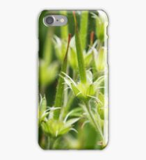 Cranesbill seed pods iPhone Case/Skin