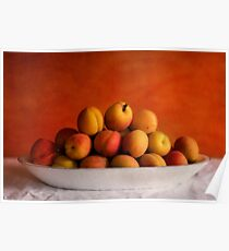 Apricot delight Poster