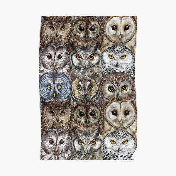 Owl Optics Poster
