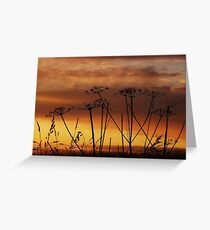 Sunset Silhouettes. Greeting Card