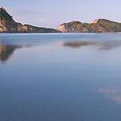 Wharariki beach pano by Paul Mercer