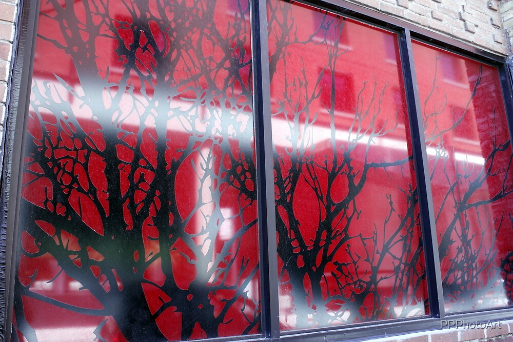 Branches in Windows by PPPhotoArt