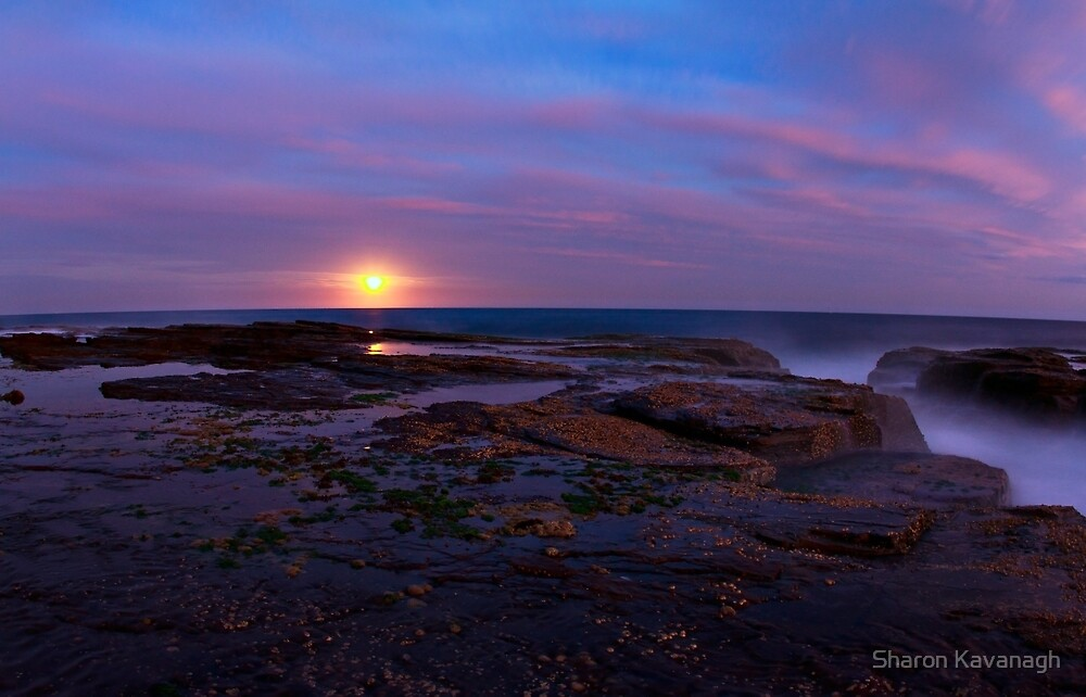 Misty Moonrise_North Narrabeen by Sharon Kavanagh