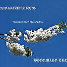 Banner für blühende Bäume von BlueMoonRose